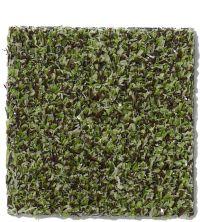 Philadelphia Commercial Arbor View (t) Mossy Bark 00310_54625
