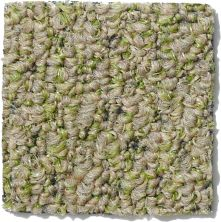 Philadelphia Commercial Gardenscape (t) Wheat Grass 00700_54629
