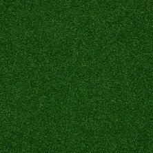 Philadelphia Commercial Performance Turf Park Central Infield 00300_54635