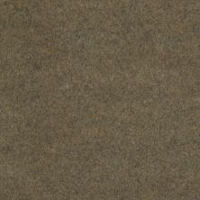 Philadelphia Commercial Softscape II 12 Peat 00700_54685
