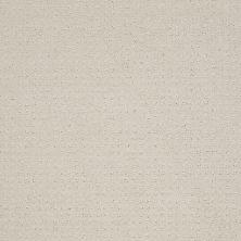 Shaw Floors Shaw Flooring Gallery Grand Image Pattern Polar 00104_5468G