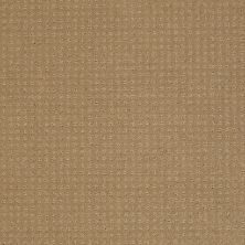 Shaw Floors Shaw Flooring Gallery Grand Image Pattern Cologne Mist 00128_5468G