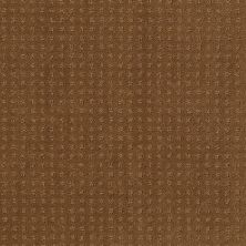 Shaw Floors Shaw Flooring Gallery Grand Image Pattern Country Wheat 00701_5468G