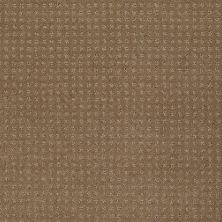 Shaw Floors Shaw Flooring Gallery Grand Image Pattern Twig 00702_5468G