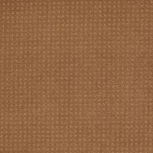 Shaw Floors Shaw Flooring Gallery Grand Image Pattern English Toffee 00703_5468G