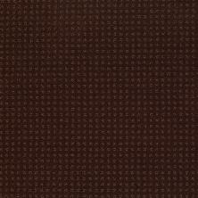 Shaw Floors Shaw Flooring Gallery Grand Image Pattern Apple Butter 00728_5468G