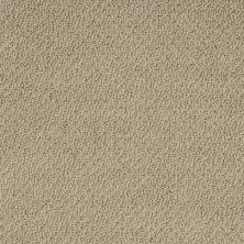 Shaw Floors Shaw Flooring Gallery Supreme Comfort Loop Taffeta 00107_5469G