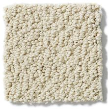 Shaw Floors Shaw Flooring Gallery Supreme Comfort Loop Parchment 00125_5469G
