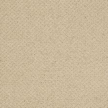 Shaw Floors Shaw Flooring Gallery Supreme Comfort Loop Chamois 00220_5469G