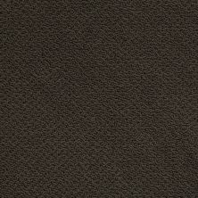 Shaw Floors Shaw Flooring Gallery Supreme Comfort Loop Magic Emerald 00304_5469G