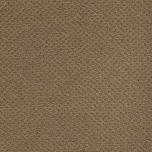 Shaw Floors Shaw Flooring Gallery Supreme Comfort Loop Bonsai 00324_5469G