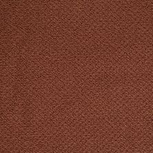 Shaw Floors Shaw Flooring Gallery Supreme Comfort Loop Terra Cotta 00600_5469G