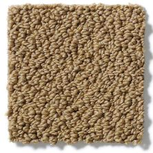 Shaw Floors Shaw Flooring Gallery Supreme Comfort Loop Country Wheat 00701_5469G