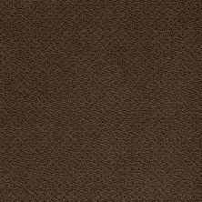 Shaw Floors Shaw Flooring Gallery Supreme Comfort Loop Coffee Bean 00705_5469G