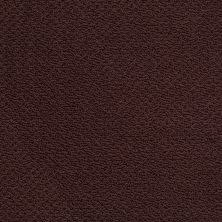 Shaw Floors Shaw Flooring Gallery Supreme Comfort Loop Plum Delight 00902_5469G