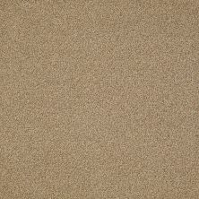 Philadelphia Commercial Snapshot Nest Sandman 00202_54719
