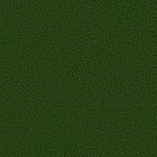 Philadelphia Commercial Performance Turf Free Time 5mm Field Green 00300_54731