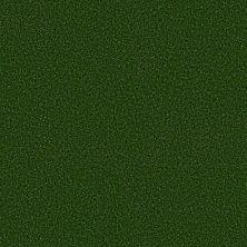 Philadelphia Commercial Performance Turf Free Time 5mm Field Green 00300_54731