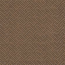 Philadelphia Commercial Tread On Me Mesa Brown 00701_54749