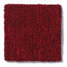 Philadelphia Commercial Neyland III 26 15′ Crimson Kiss 66811_54768