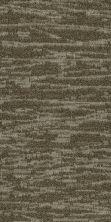 Philadelphia Commercial Modern Terrain Tidewater Salt Flat 00710_54849