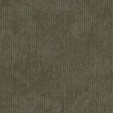 Shaw Floors Cultured Collection Biotic Distinction 00700_54917