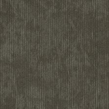 Shaw Floors Cultured Collection Esthetic Inherent 00515_54918