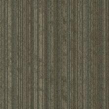 Shaw Floors Take Shape Collection Sort Twist 00210_54919