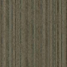 Shaw Floors Take Shape Collection Sort Fold 00700_54919