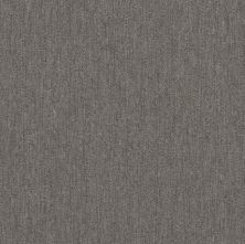 Philadelphia Commercial Profusion Tile Plenitude 00500_54931