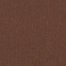 Philadelphia Commercial Profusion Tile Surplus 00600_54931
