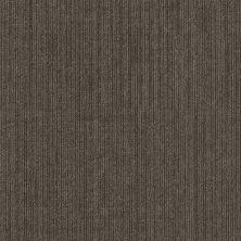 Shaw Floors Natural Slate Native Indigenous 00200_54963