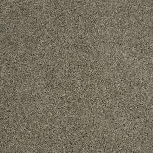 Shaw Floors Shaw Flooring Gallery Embark Silver Sage 00310_5506G