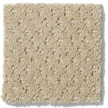 Shaw Floors Shaw Flooring Gallery Departure Wool Skein 00111_5510G