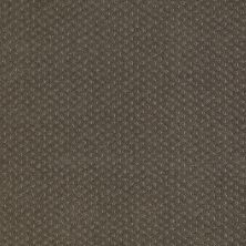 Shaw Floors Shaw Flooring Gallery Departure Graphite 00712_5510G