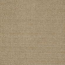Shaw Floors Shaw Flooring Gallery Unleashed Wool Skein 00111_5514G
