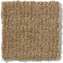 Shaw Floors Shaw Flooring Gallery Unleashed Mushroom 00703_5514G