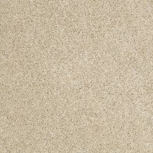 Shaw Floors Shaw Flooring Gallery Canvas Dunes 00102_5518G