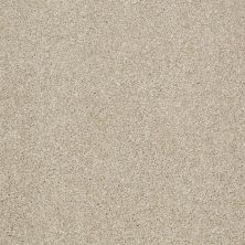 Shaw Floors Shaw Flooring Gallery Canvas Frost 00104_5518G
