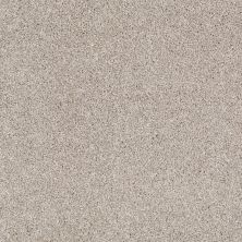 Shaw Floors Shaw Flooring Gallery Canvas Mist 00112_5518G