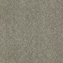 Shaw Floors Shaw Flooring Gallery Canvas Silver Sage 00310_5518G