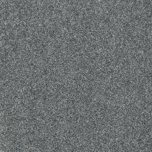 Shaw Floors Shaw Flooring Gallery Canvas Azure 00410_5518G