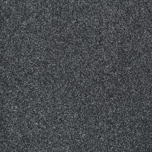 Shaw Floors Shaw Flooring Gallery Canvas Indigo 00411_5518G