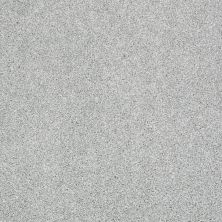 Shaw Floors Shaw Flooring Gallery Canvas Drizzle 00414_5518G
