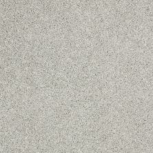 Shaw Floors Shaw Flooring Gallery Canvas Sea Salt 00512_5518G