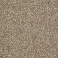Shaw Floors Shaw Flooring Gallery Canvas Prairie 00710_5518G