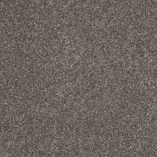 Shaw Floors Shaw Flooring Gallery Canvas Graphite 00712_5518G