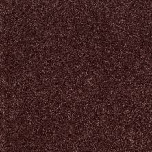 Shaw Floors Shaw Flooring Gallery Canvas Berry 00810_5518G