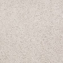 Shaw Floors Shaw Flooring Gallery Mcentire Fine Lace 00100_5520G