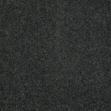 Shaw Floors Shaw Flooring Gallery Mcentire Emerald 00320_5520G